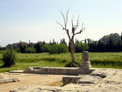 """""""Sulle orme degli antichi Greci"""" Domenica 12 Febbraio!"""