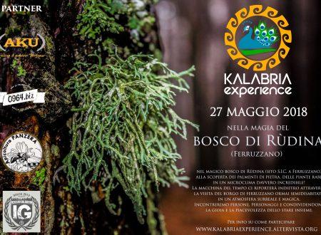 Domenica 27 Maggio – Escursione al Bosco di Rudina (Ferruzzano Superiore) –