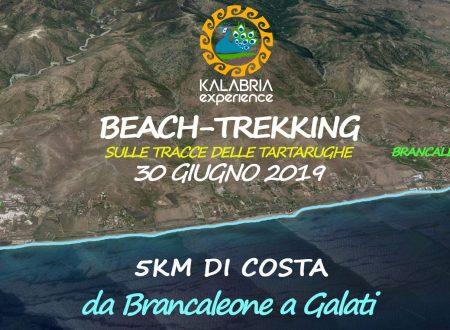 Domenica 30 Giugno Beach Trekking sulle tracce delle Tartarughe marine